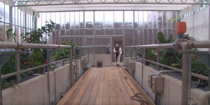 Abdij gebruikt biologische waterzuiveringsinstallatie